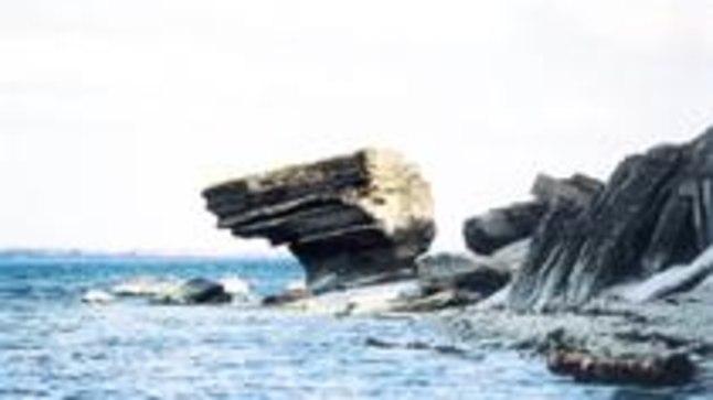 MITMEKÜLGSED LOODUSVAATED: Väike-Pakri saare ühes otsas on kena pankrannik, Paldiski-poolses küljes aga suur rauahunnik. Metsatukas keset saart asub järv, mille kaldal elutsevad sookurepered.