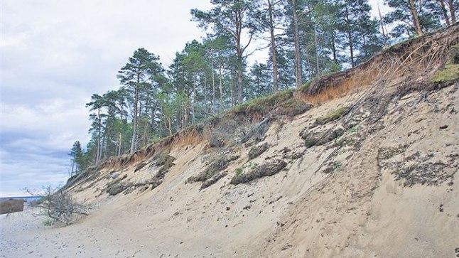 KÕRGE ASTANG: Umbes kümnemeetriselt liivaastangult avaneb hunnitu vaade Kolga lahele, eriti muljetavaldav on sealt jälgida päikeseloojangut.