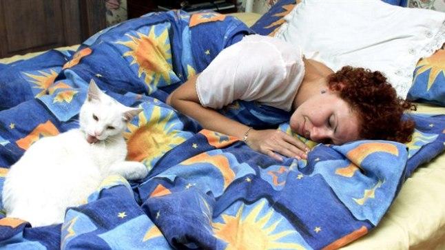 Kui lemmik tavatseb voodis magada, tasub voodipesu sagedamini vahetada.