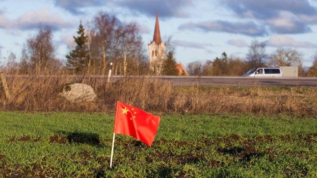 SIHIKUL: Toiduprobleemi lahendamiseks on hiinlased alustanud maailmas maade haaramist. Ostetud on Aafrikast, renditud Bulgaariast ja Ikrainast. Sihikule on võetud ka Eesti.
