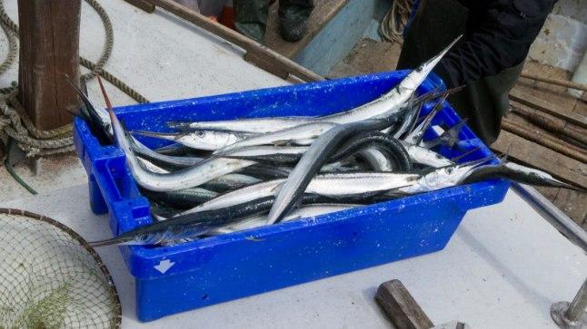 Продукты из рыбы эстонского проихождения в основном соответствуют требованиям качества и информации на этикетах