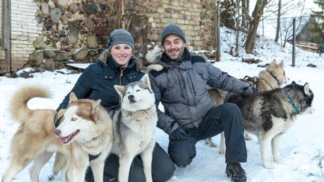 MEELDIB LUMI JA PAI: Kuna Renatal ja Viljaril on kakskümmend kaks Siberi husky't, ei jõua nad iga päev neid kõiki patsutada. «Sellepärast on hea, et inimesed meil külas käivad,» ütleb Renata. Lisaks paidele armastavad husky'd üle kõige ka lund.