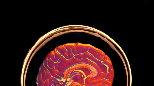 Kas teadus suudab selgitada teadvuse olemust?