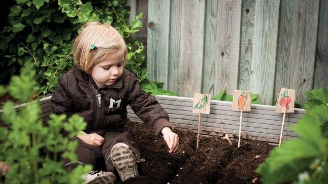 Väikesest aednikust võib palju rõõmu ja abi olla