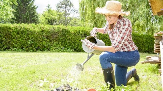 Varjuline nurgake: Hea, kui saad aias varuda endale mõne nurgataguse, kus iga parajasti pooleliolev töö aiailu nautima tulnute silma ei riiva.