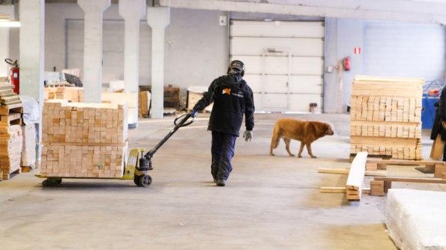 Foto on illustreeriv (puidutöötlus ettevõtte)