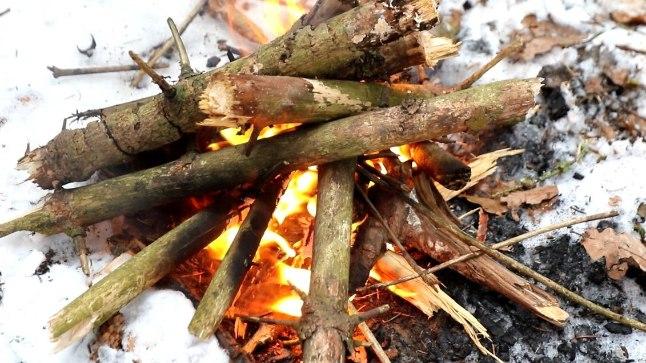 ÕHTULEHE VIDEO | 21. SAJANDI METSAVEND III: kuidas saada metsas lõke põlema vaid tulepulga abiga?