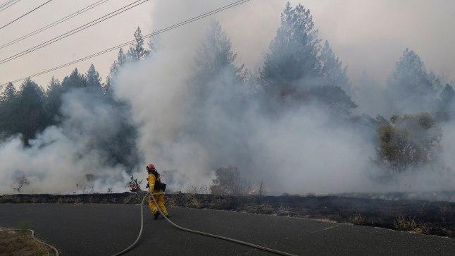 Põlengud Põhja-California veinipiirkonnas