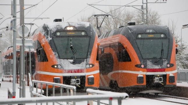 Elroni rongid nautimas selle aasta esimest lund.