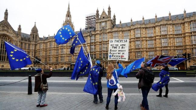 BREXITI VASTU: Londonis Briti parlamendi juures seisavad pidevalt üksikud meeleavaldajad, kes soovitavad peaminister Theresa Mayl Brexitist loobuda. Pilt on tehtud 14. novembril.