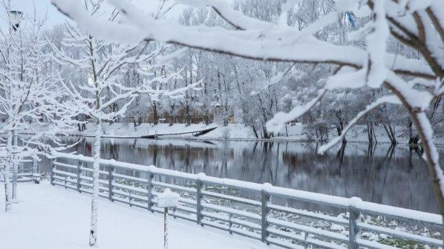 HÄÄLETA! Milline on Eesti parim jõululaul? Esimene voor
