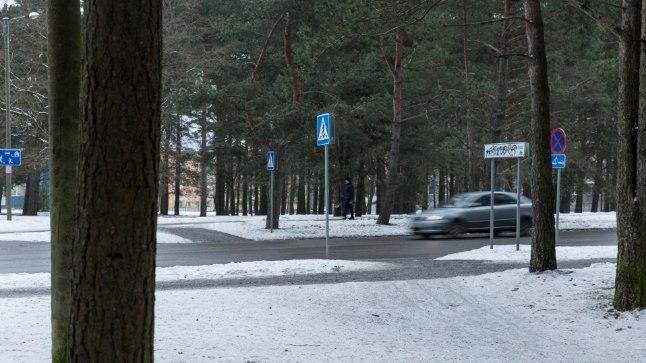 ÕNNETUSPAIK: Laupäeval sõitis Tallinnas Sütiste teel juht otsa kahele inimesele ja koerale ning lahkus sündmuskohalt.