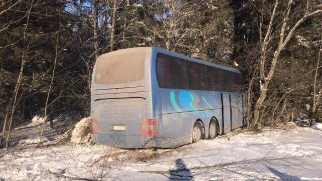 VASTU PUUD: Üle vastassuunavööndi teelt välja sõitnud buss peatus metsas.