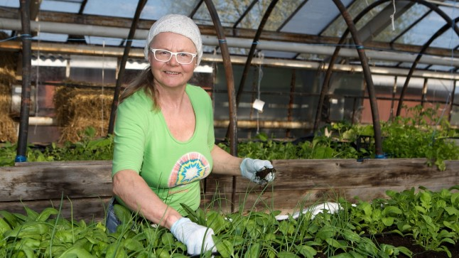 Õhku ja ruumi: Kogenud aednik  Eha Kooser soovitab algajal aiapidajal järgida teada-tuntud tõde: vähem on rohkem. «See kehtib ka külvamisel-istutamisel,» ütleb ta. «Kui kasvuruumi on piisavalt, on ka saak parem.»