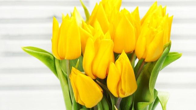 Lilled teevad tuju heaks!