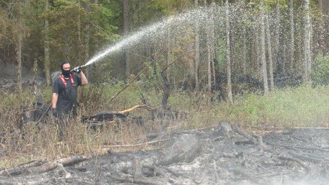 Metsatulekahju Hummuli vallas 2016. aasta mais.