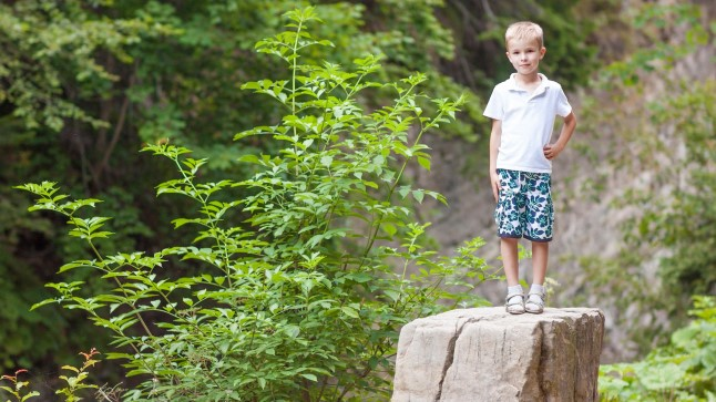 Kivikuninga mäng: laps seisab teistest kõrgemale kivile (etnograafiline). Vida Press