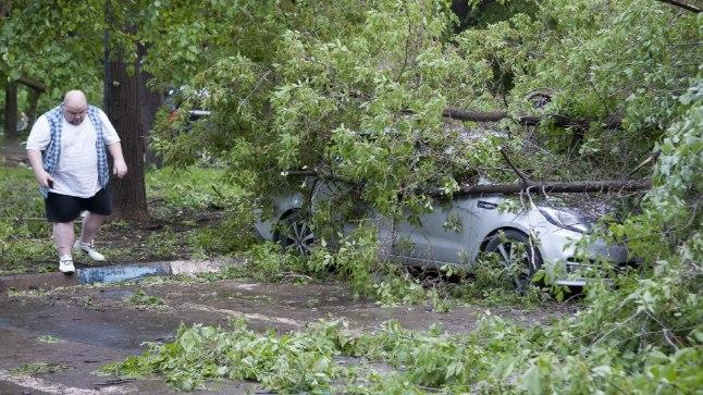 NÕUTU: Mehel jääb üle ainult nõutult vaadata oma autot, mille puu on lömastanud.
