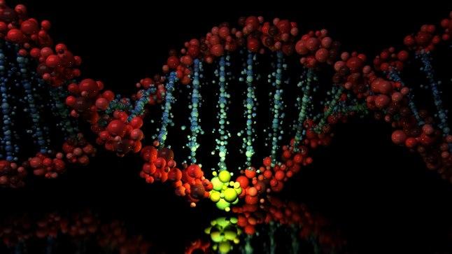 DNA MUUTUB PIDEVALT: Osa geenimutatsioonidest on kahjulikud või ei pääse mõjule, teised annavad üleloomulikke võimeid ja omadusi.