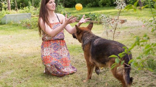 PÜÜA: Triinu pereliikmed on olnud loomaarmastajad põlvest põlve. Tema ema hundikoer on pallimängus alati käpp.
