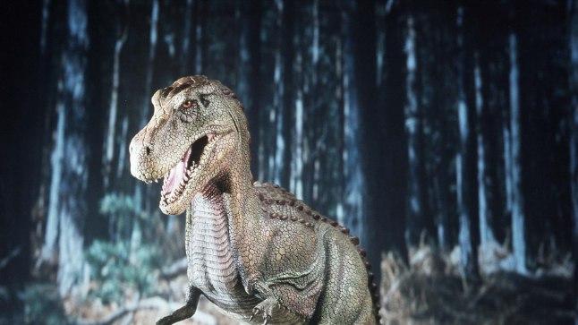 HIRMUÄRATAV, KUID KOHMAKAS: Kuigi filmides kujutatakse türannosauruseid (pildil rekonstruktsioon) sageli välejalgsete tagaajajatena, suutis see kiskja oma suure massi tõttu joosta aeglasemalt kui inimene.