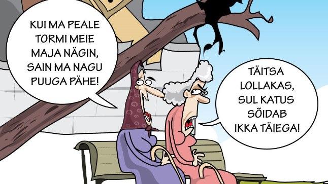Karikatuur   Torm