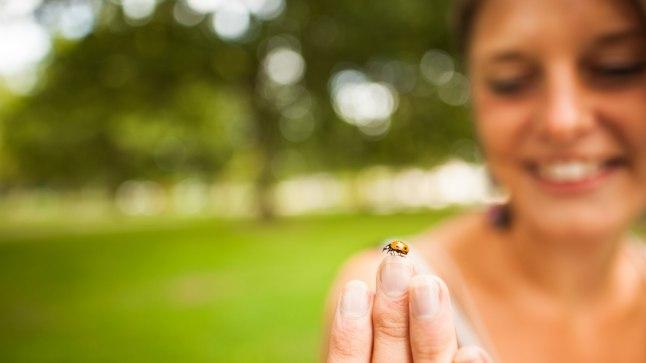 Õppida võiks oskust siiralt rõõmustada ka väikeste asjade üle, näiteks kohtumisest lepatriinuga.