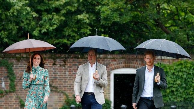 Diana pojad William ja Harry kolmapäeval Kensingtoni lossi aias.