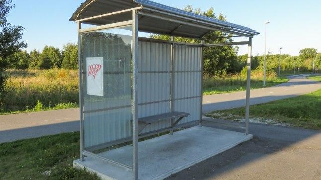 Repliik | Tasuta ühistranspordi asemel võetakse bussiliinid üldse käigust?