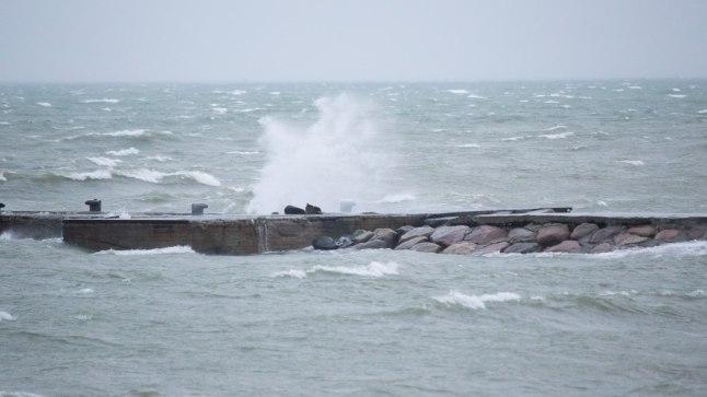 Tormine meri (pilt on illustreeriv).