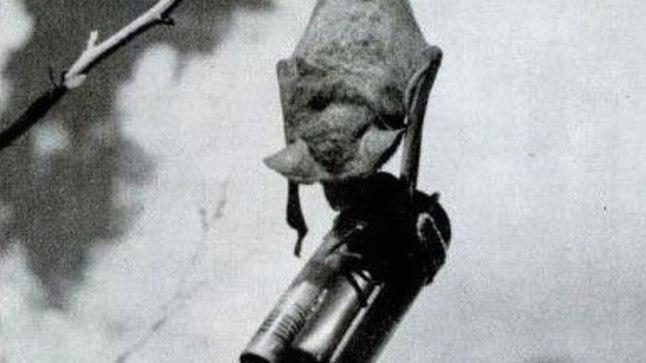 SÕJARAUD | Tiivulised suitsiiditerroristid maailmasõjas