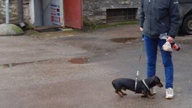 Naine haige sõbranna koeraga