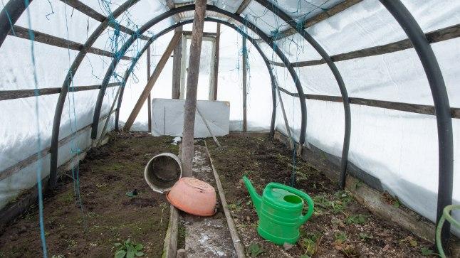 OOTEL: Kunagises narkokasvuhoones rohetavad maasikalehed ootavad enda kõrvale arbuusiseemneid.