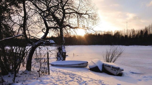 Talv Värskas