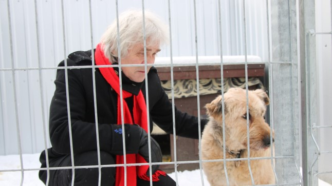 Jüri Aarma puges kodutu koeraga ühte puuri