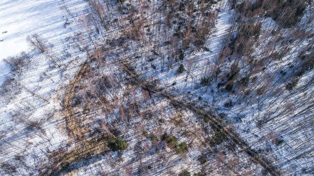 Droonifoto Soomaal toimuvatest raietest.