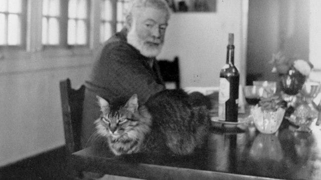KASS ON KIRJANIKU ABIMEES: Kirjatöö tegijatel soovitas otsesõnu kassi pidada šoti kirjadaam Muriel Spark, ent lauaserval lamasklev karvakera on rõõmustanud paljusid literaate. Tuntud kassisõber oli ka Ameerika kirjanik Ernest Hemingway (1899–1961), pildil 1950ndatel oma Kuuba kodus.