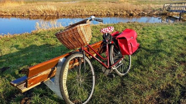 Head nipid, kuidas jalgratas kevadeks korda saada!