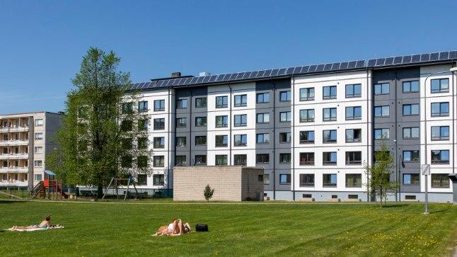 Чудо на Акадеэмия теэ: как построенная в 80-е годы общага стала домом с нулевым потреблением энергии
