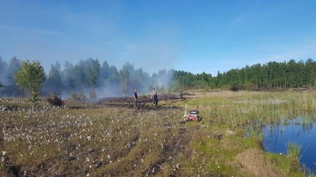 TURVAS KÄRSSAB: Laupäeval süttis kaks hektarit turbapinnast Toila vallas Süsinõmme liivakarjääri lähedal.