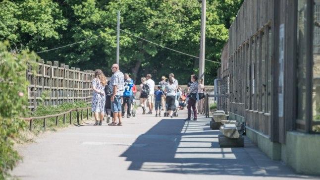 Lastekaitsepäev loomaaias.
