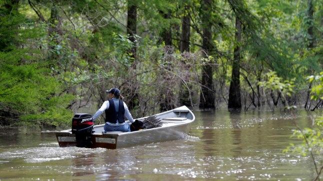 Kalastaja Louisiana soos: just sellistes soojades magevetes amööb levibki