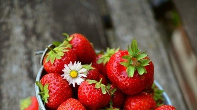 See on väga oluline, et maasikad oleksid terved.