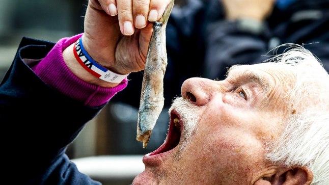 Kala söömine lennukis peaks ilmselt olema ametlikult keelatud - isegi siis, kui tegu pole rootslaste kuulsa hapukala surströmminguga.