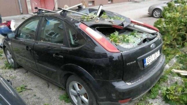 Puu alla jäänud auto