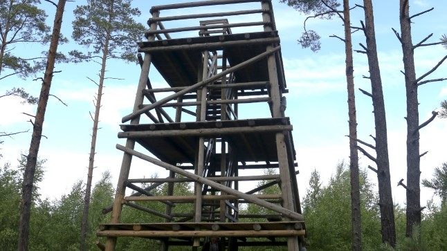 Linnutornid Eestis