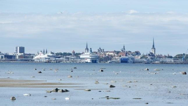 Tallinna linnavaade