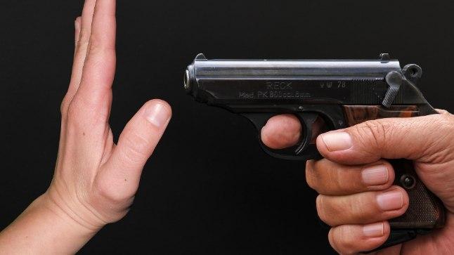 Peale igat suur tragöödiat jõuavad lääne meediasse poliitikute sõnavõtud, mis keskenduvad videomängude vägivaldusele. Relvadega seotud seaduste muutmisest ei taheta aga rääkidagi.