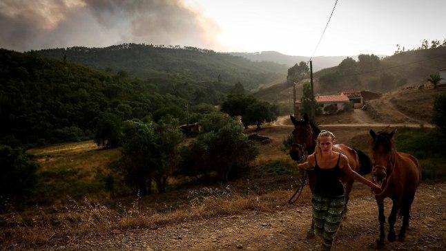 TULE EEST PAKKU: Naine viib Portugali Algarves evakueeritud külast minema ka oma hobused.