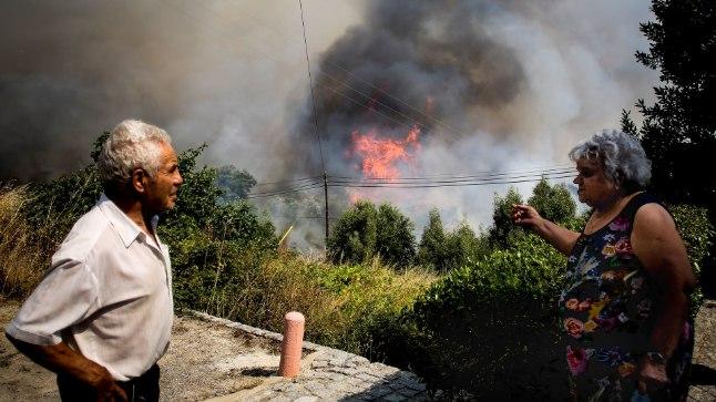 METSAPÕLENG: Tänavusuvise kuumalainega kaasnevad Euroopas suured metsapõlengud. Pilt on tehtud 7. augustil Lõuna-Portugalis Algarves.